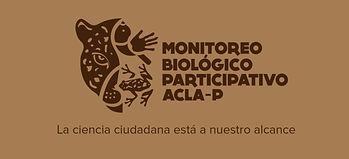 LogoBM.jpg