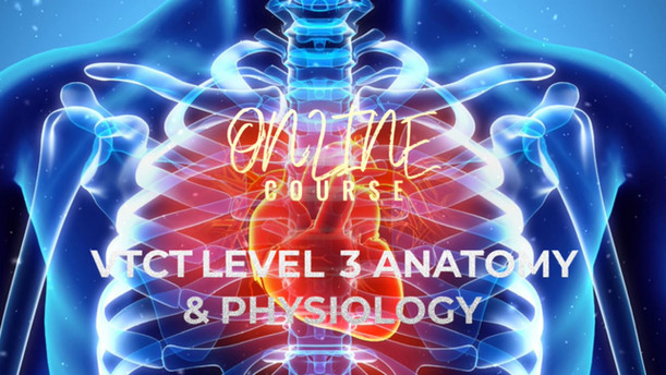 VTCT L3 ANATOMY & PHYSIOLOGY TRAINING