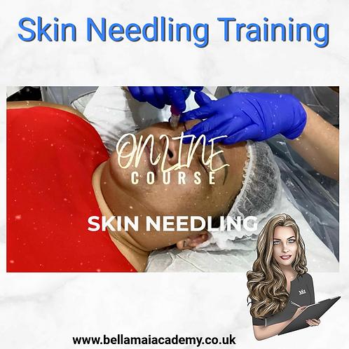 Skin Needling Training