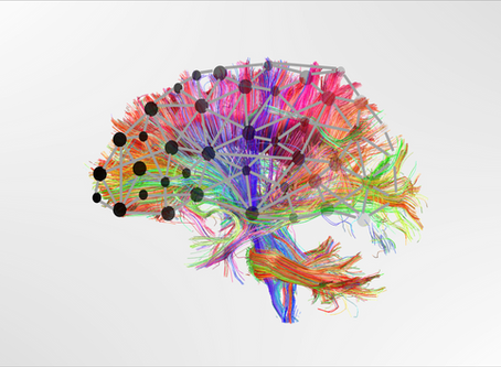 No 'core brain deficit' underpinning learning difficulties