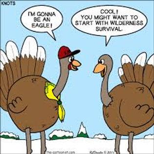 turkey_eagle.jpg