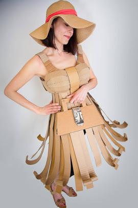 Cardboard Dress D2 - @alinescardboard