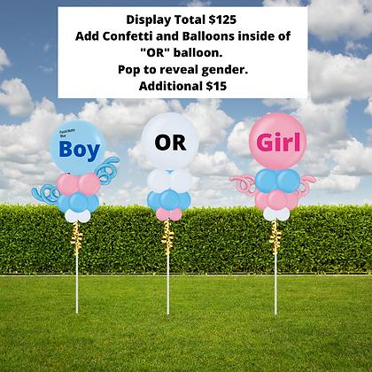 Gender Reveal Display