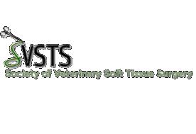 VSOS-SVSTS