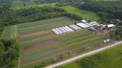 Farm video shot