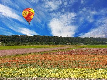 熱氣球X花田模擬.jpg