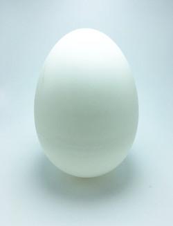 RFID Egg