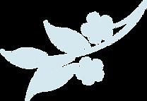LTT FLOWER-min.png