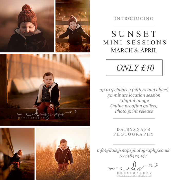 Sunset Mini Sessions!