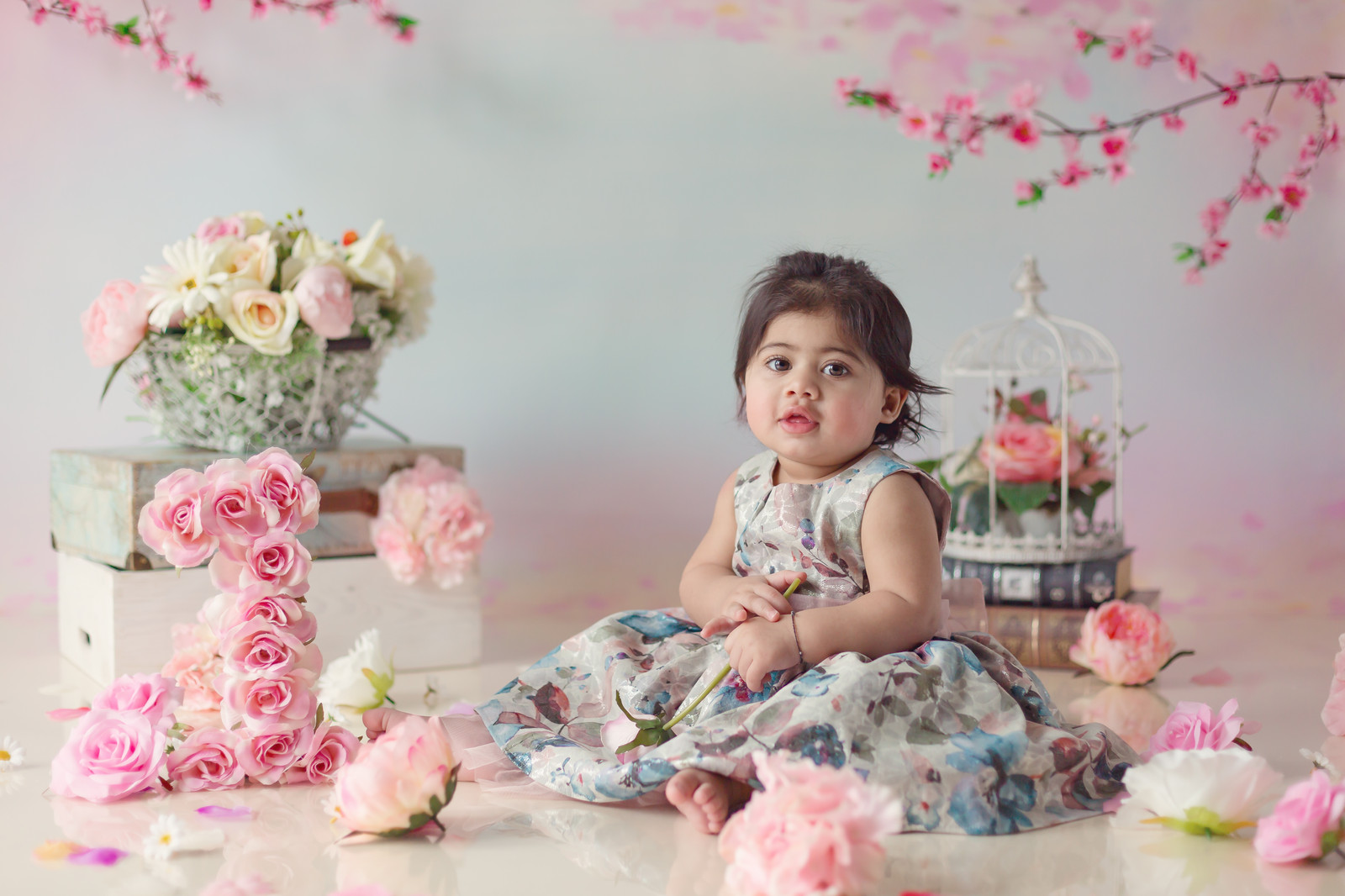 1st birthday cake photo shoot