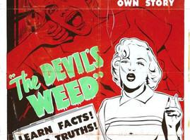 The 7 Cannabis Canards