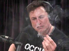 Elon Musk Isn't Blowing Smoke up Your Skirt
