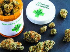 Medicinal Cannabis Improves 96% of Cancer Patients: Euro Study