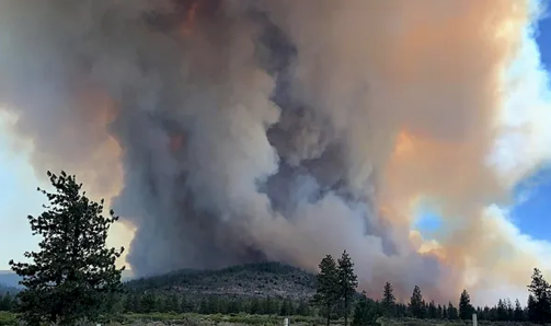 Fire Season Has Already Started, Is Your Grow in Trouble?