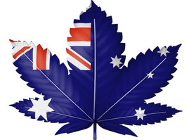 Australian Rules: Medicinal Cannabis Exports Approved