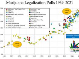 No American Majority Supports Marijuana Prohibition Anymore
