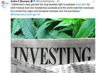 Entrepreneur.com Quotes Epstein on Cannabis Investors' Risk Tolerance
