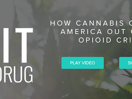 The Exit Drug, Must-See Cannabis Film by Weedmaps