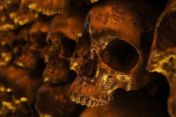 The Goldbar NYC Gold Skull Wall Decor by
