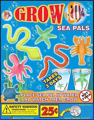 Grow Sea Pals