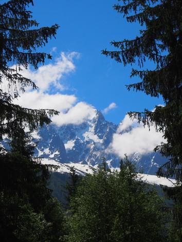 Mont Blanc through the trees
