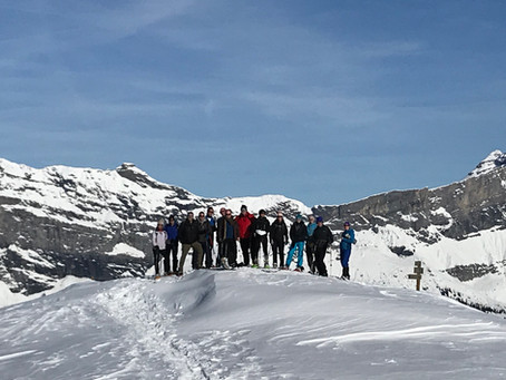 Strategy In The Snow - Corporate Team Building