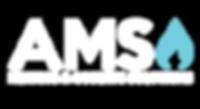 AMS-LOGO-White-new.png