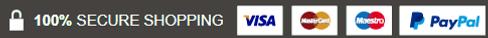Visa new grey PNG (1).png