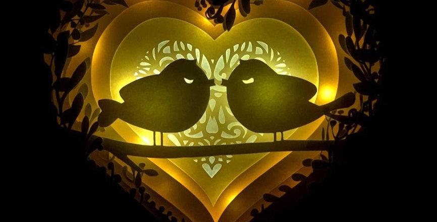Love Birds Lightbox