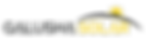 Galusha Solar Logo