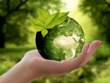 Unsere Seele ist grün