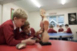 Year 5 anatomy class