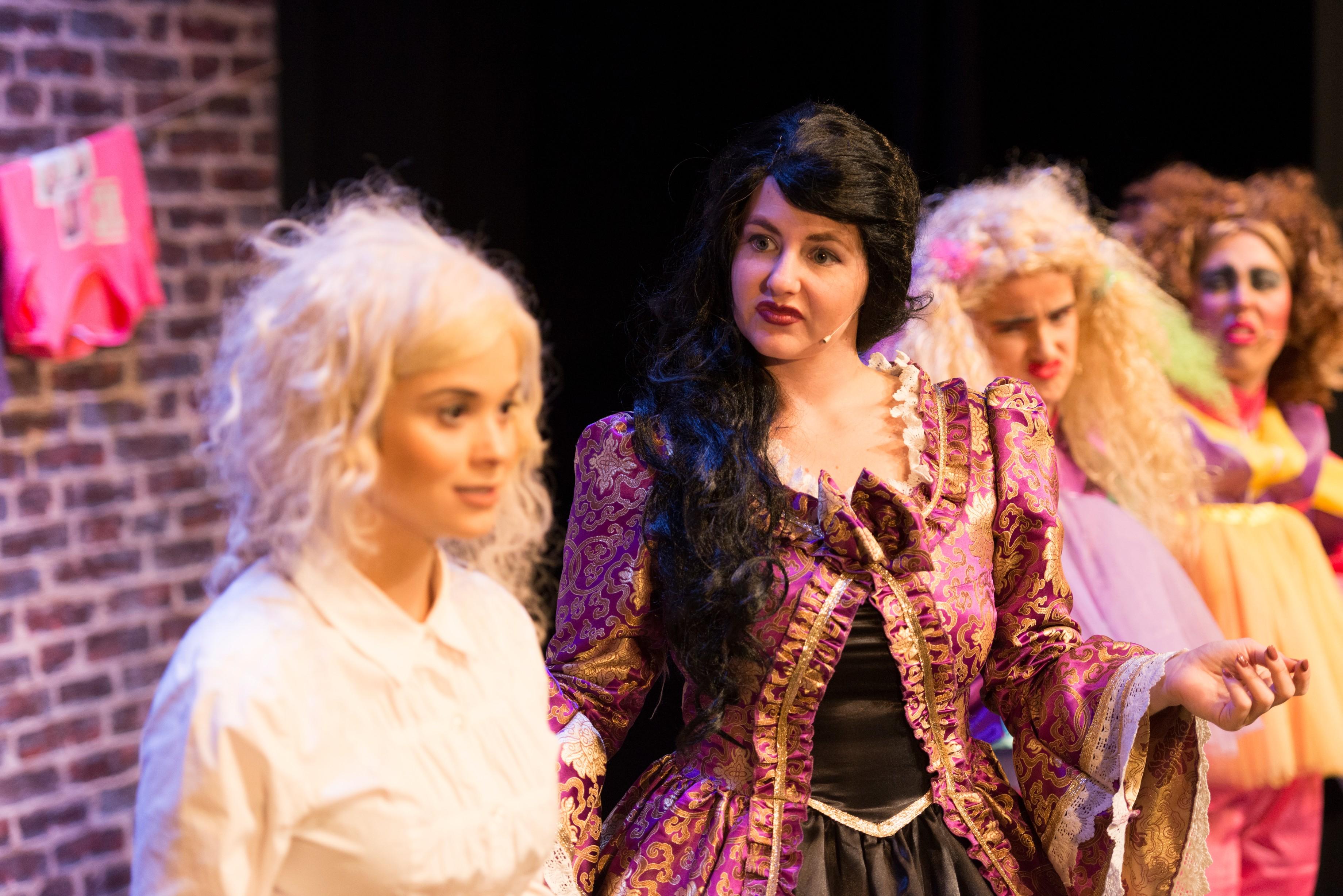 Cinderella, Baroness & Stepsisters