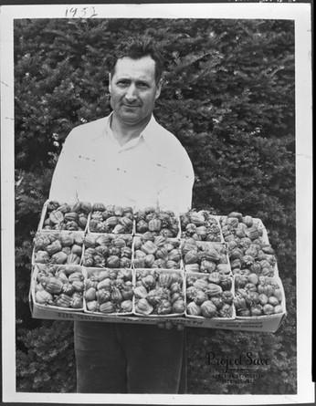 1954, Marlboro, Massachusetts