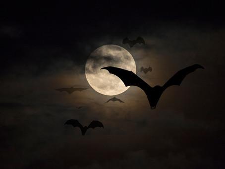 Nunca convide um vampiro para entrar na sua casa