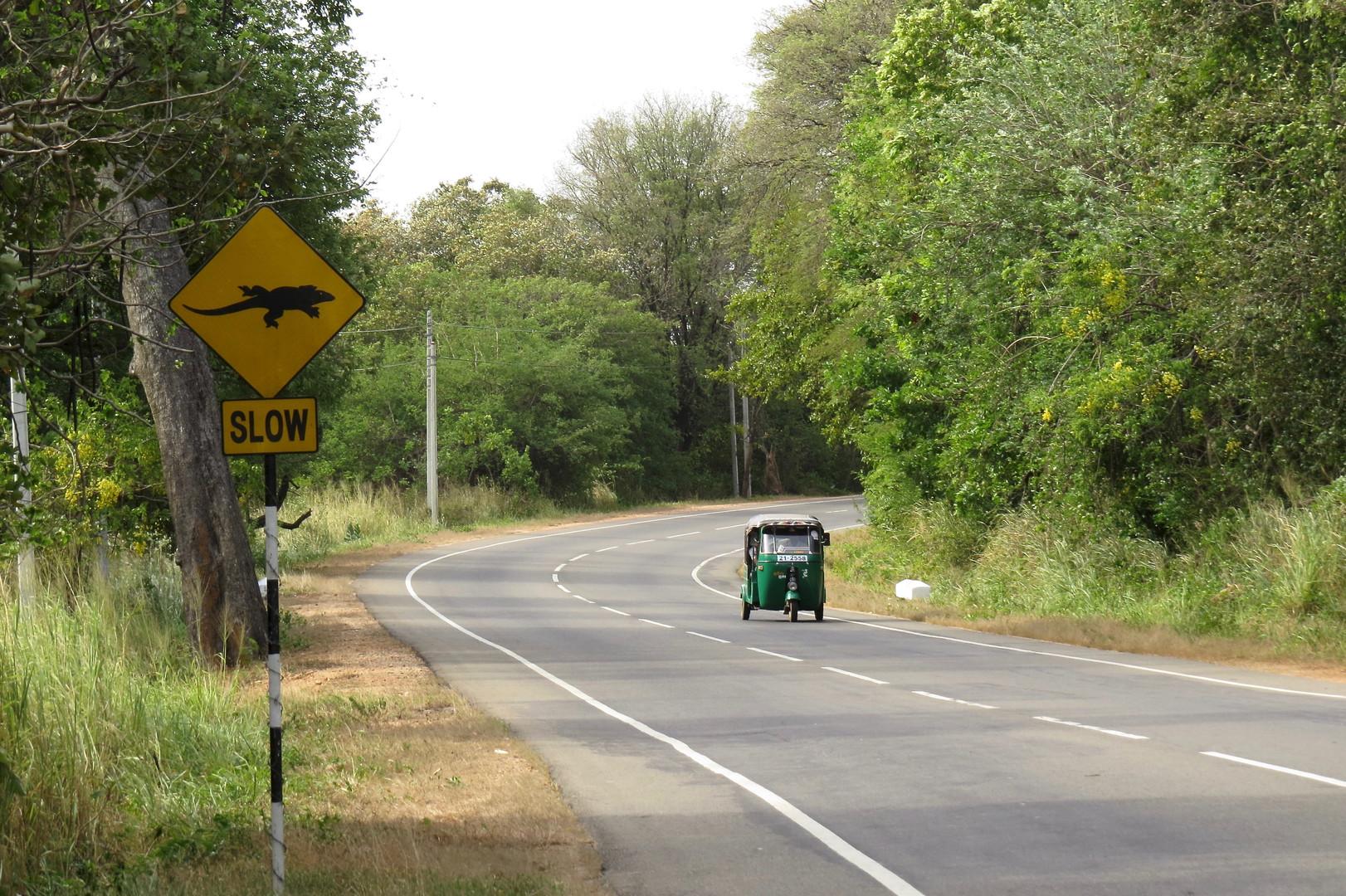Habarana Polonnaruwa Road.jpg