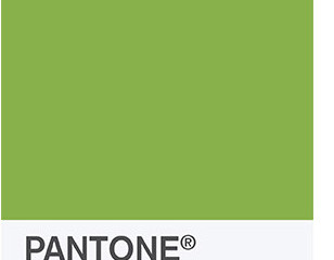 Announcing: Pantone's Color of the Year