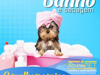 Banho em excesso pode prejudicar a proteção natural da pele dos pets