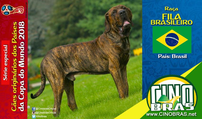 Raça: FILA BRASILEIRO País Origem: BRASIL  O Fila Brasileiro é um cão fiel ao dono, companheiro, protetor e calmo. Um excelente cão de guarda que fará de tudo pra defender sua família.