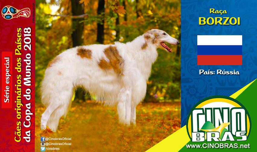 Raça: BORZOI País Origem: RÚSSIA  A raça Borzói é independente, se dá bem com crianças e alguns podem ser tímidos. Em relação com estranhos, esses cães podem ser desconfiados.