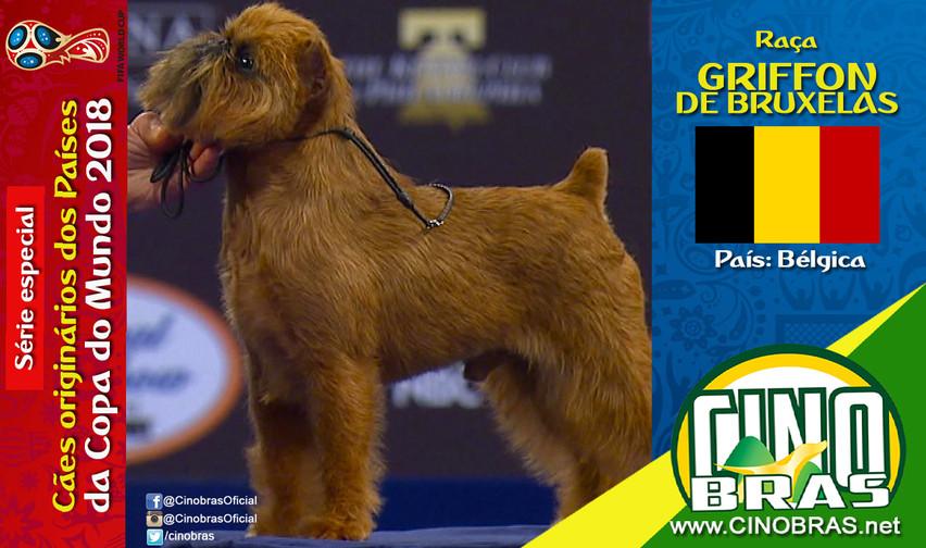 Raça: GRIFFON DE BRUXELAS País Origem: BÉLGICA  O cão da raça Griffon de Bruxelas possui entusiasmo e autoconfiança. Ele se dá bem com outros cachorros e outros animais, adora pessoas de qualquer idade e crianças.