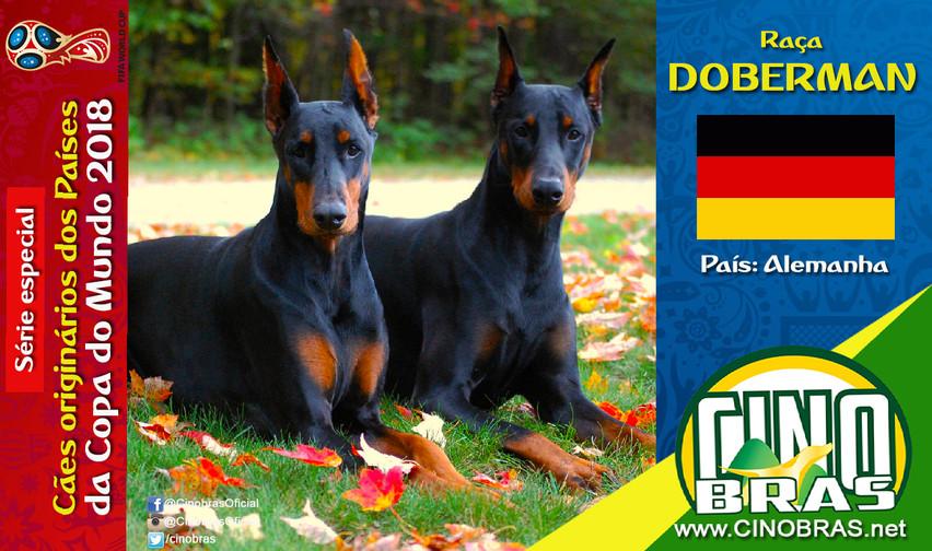 Raça: DOBERMAN País Origem: ALEMANHA  O Dobermann é um cachorro de guarda e bastante inteligente. É uma raça que vai estar sempre alerta e pronta para proteger sua casa e família humana.