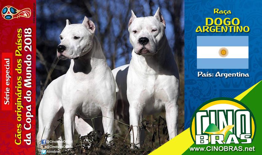 Raça: DOGO ARGENTINO País Origem: ARGENTINA  O Dogo Argentino é extremamente fiel aos donos, aprende aos comandos com facilidade e é muito paciente com criança. Entretanto tem pouca tolerância quando seu território é invadido por estranhos.