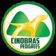 logo-cinobras-2019.png