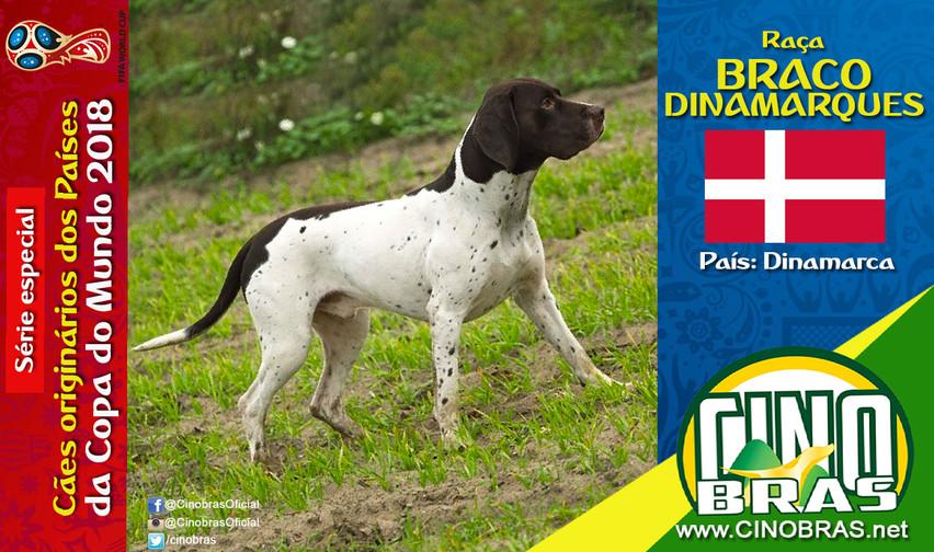 Raça: BRACO DINAMARQUÊS País Origem: DINAMARCA  A raça Braco Dinamarquês é muito utilizada para caça. É um cão inteligente, obediente e tem comportamento tolerante e dócil. Entretanto ele tem energia e precisa de doses de exercícios.