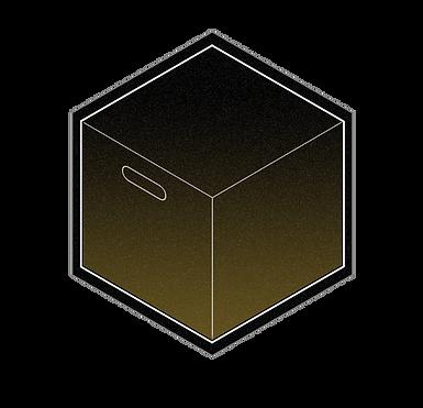 ICO_ESA_BOX_Plio.png