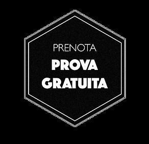 ICO_ESA_Prova.png