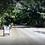 Thumbnail: Terreno Rep Dom Jarabacoa, La Vega