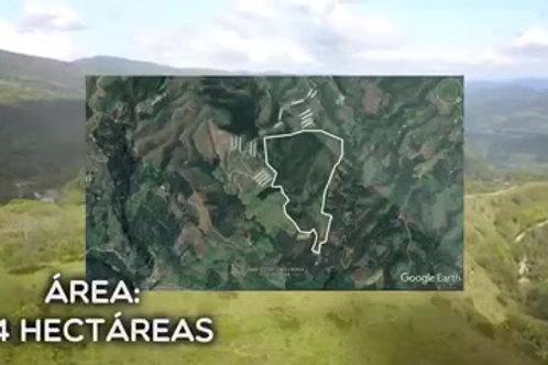Finca Colombia Vereda Juan Curi Santander