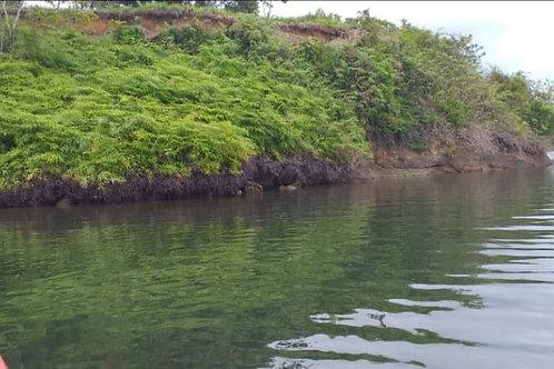 Terreno Panama Isla Punta Laurel